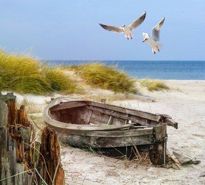 Pixerstick para Todas las Superficies Viejo barco de pesca, gaviotas, playa y mar