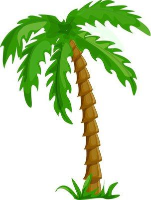 вектор тропических пальм на белом фоне