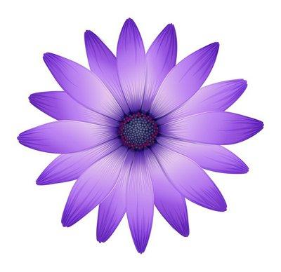 A fresh purple flower