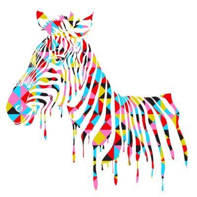 Abstract zebra - vector illustration