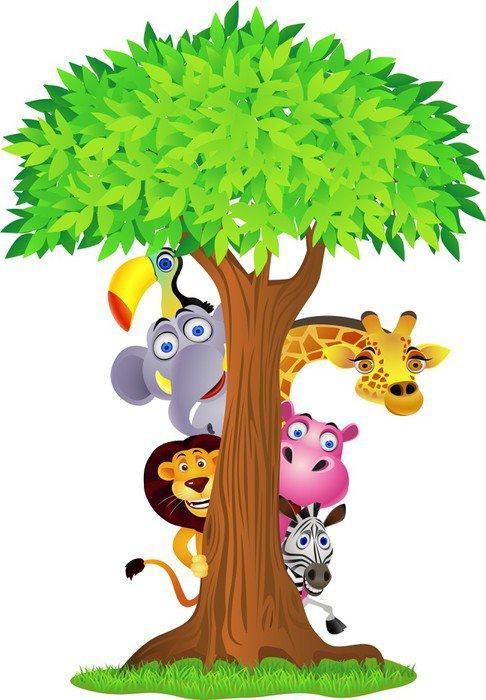 Animal hiding behind tree