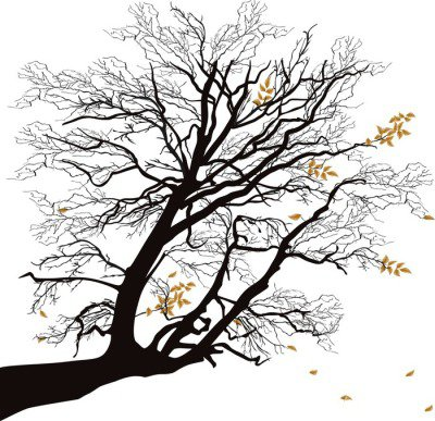 autumn tree branch isolated on white