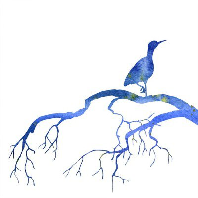 bird at tree silhouettes