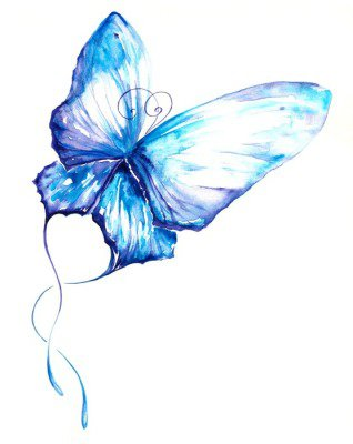 Butterfly watercolor painted.