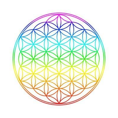 Chakra Farben Blume des Lebens