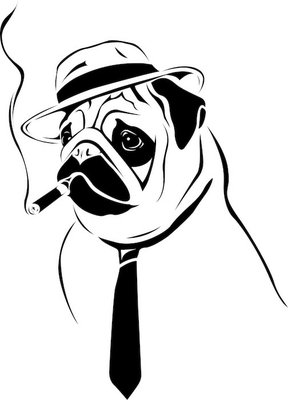 Cool Boy - Pug