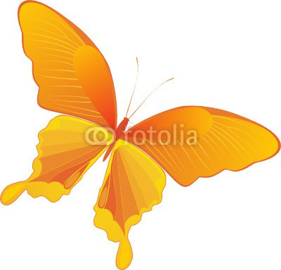 decorative yellow butterfly