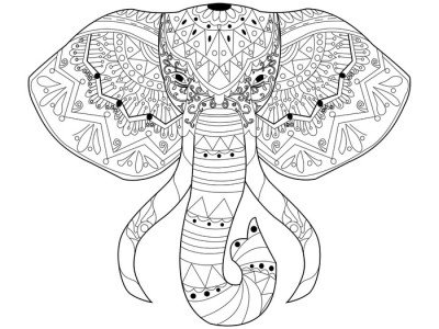 Wall Decal Elephant coloring vector for adults