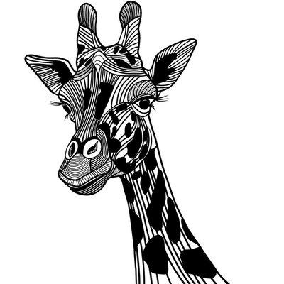 Giraffe head vector animal for t-shirt. Sketch tattoo design.
