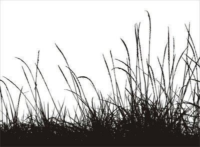 grass vector silhouette