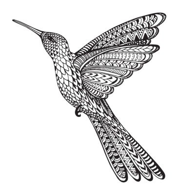 Hand drawn abstract flying colibri in ornate doodle style