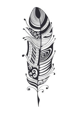 Hand drawn feathers. ink vector illustration. boho style design elements. ethnic creative doodles. isolated on white background
