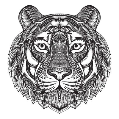 Hand drawn graphic ornate tiger