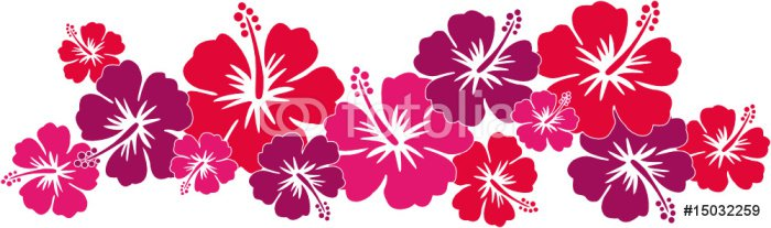 Hawaiiblumen rot (Bordüre)