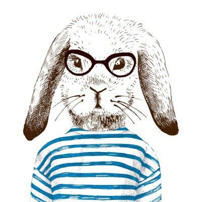 illustration of dressed up bunny
