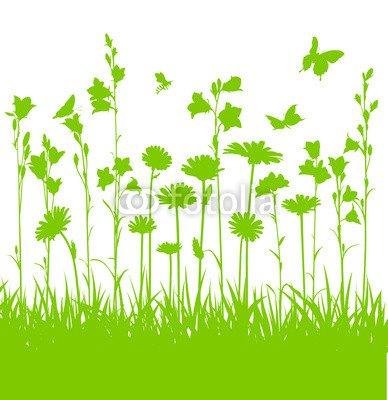 Naturwiese