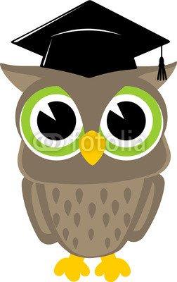 owl cartoon graduation