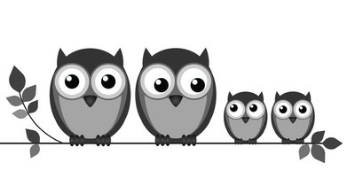 Owl family on branch