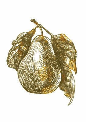 pear, hand drawing