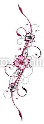 Ranke, Kirschblüten, flora, Blumen, Blüten, cherry blossom