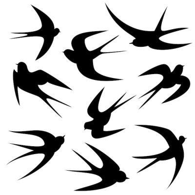 Schwalben Tattoo Vorlage Vektor Silhouette