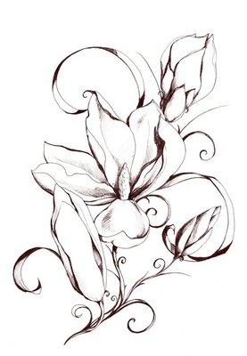 Shape of magnolia flowers.My own artwork.