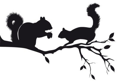 squirrels on tree branch, vector