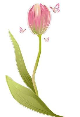 Tulip flower with butterflies, vector