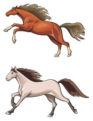Two running horses, wild mustang, realistic vector