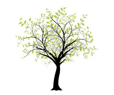 vecteur série - décoration vectorielle verte arbre sur blanc