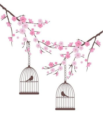 vector cherry blossom with birds in cages