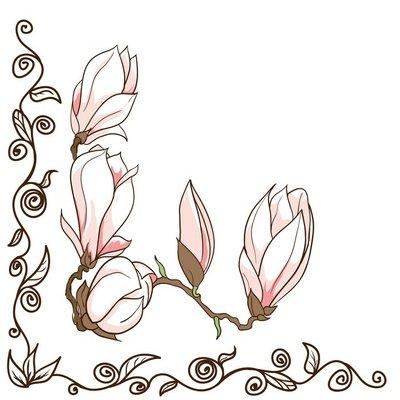Vector hand drawn magnolia flowers - ornamental corner frame