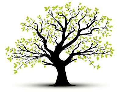 vector set - decorative tree and green leaves