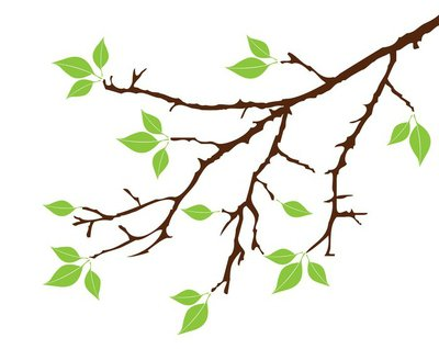 Vector tree branch with green leaves