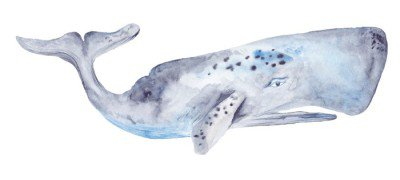 Wall Decal Watercolor Whale Painting