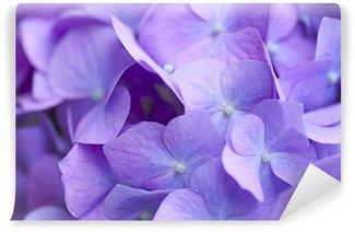 青紫のアジサイ Wall Mural - Vinyl