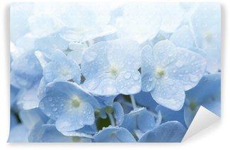 ブルーのアジサイ Wall Mural - Vinyl