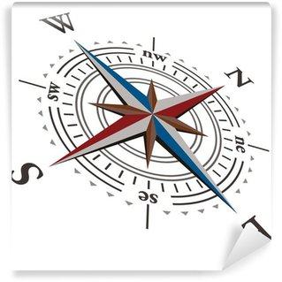 3 D Vector wind rose compass Wall Mural - Vinyl