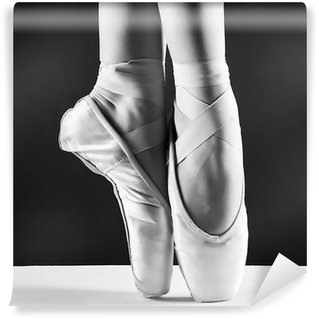 Vinyl Wall Mural A photo of ballerina's pointes on black background