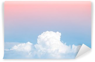 abstract soft sky cloud with gradient pastel vintage color for backdrop background use Wall Mural - Vinyl