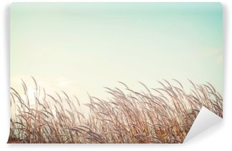 Wall Mural - Vinyl abstract vintage nature background - softness white feather grass with retro blue sky space