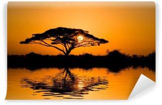 acacia tree at sunrise Wall Mural - Vinyl