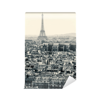 Aerial view of paris with eiffel tower black and white for Eiffel tower wall mural black and white