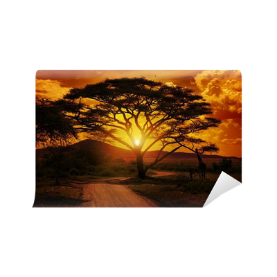 Africa sunset wall mural pixers we live to change for African sunset wall mural