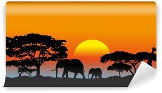 African savanna Wall Mural - Vinyl