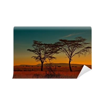African sunset in the serengeti national park tanzania for African sunset wall mural