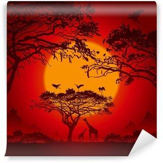 African sunset Wall Mural - Vinyl