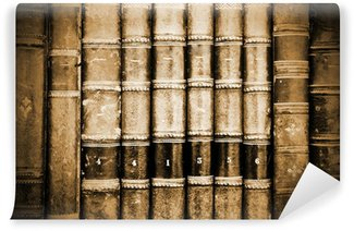 Wall Mural - Vinyl Ancient Bookds