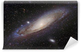Andromeda Galaxy Wall Mural - Vinyl