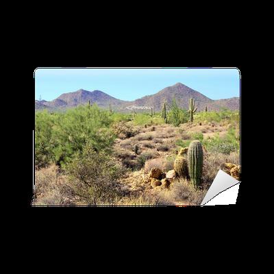 Arizona desert view with mountains near phoenix wall mural for Desert wall mural